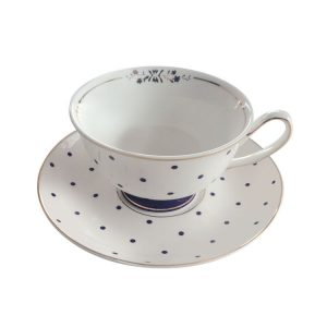 BOMBAY DUCK BLUE AND WHITE TEACUP AND SAUCER
