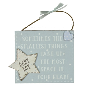 THE SMALLEST THINGS BOY PLAQUE